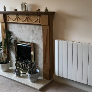 Intelli Heat Radiators Review picture