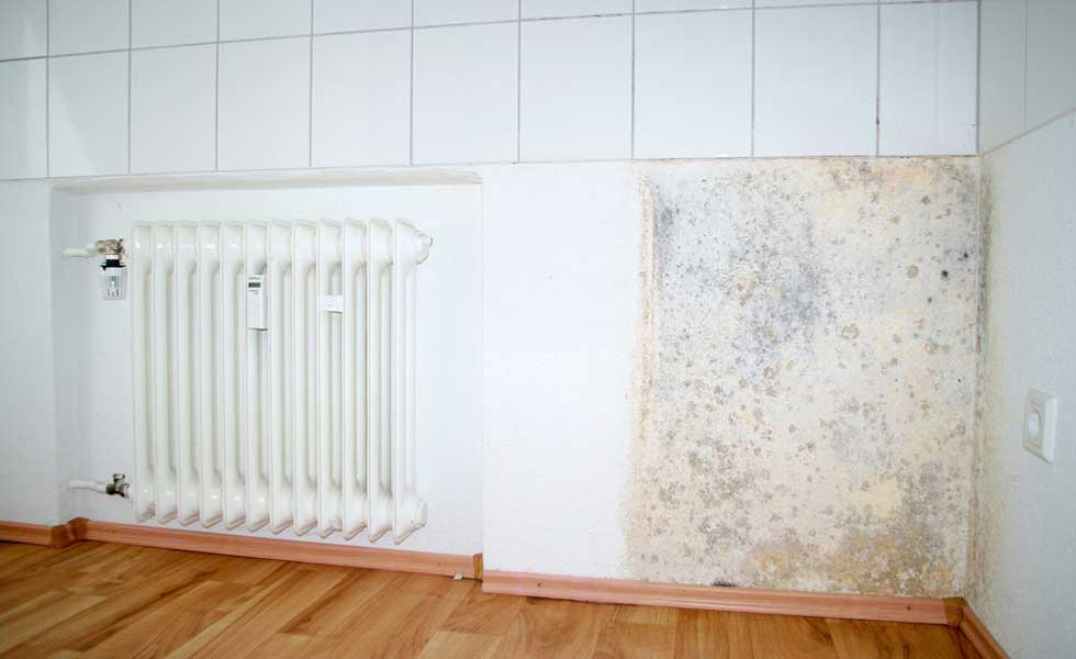 damp-wall-and inefficient radiator